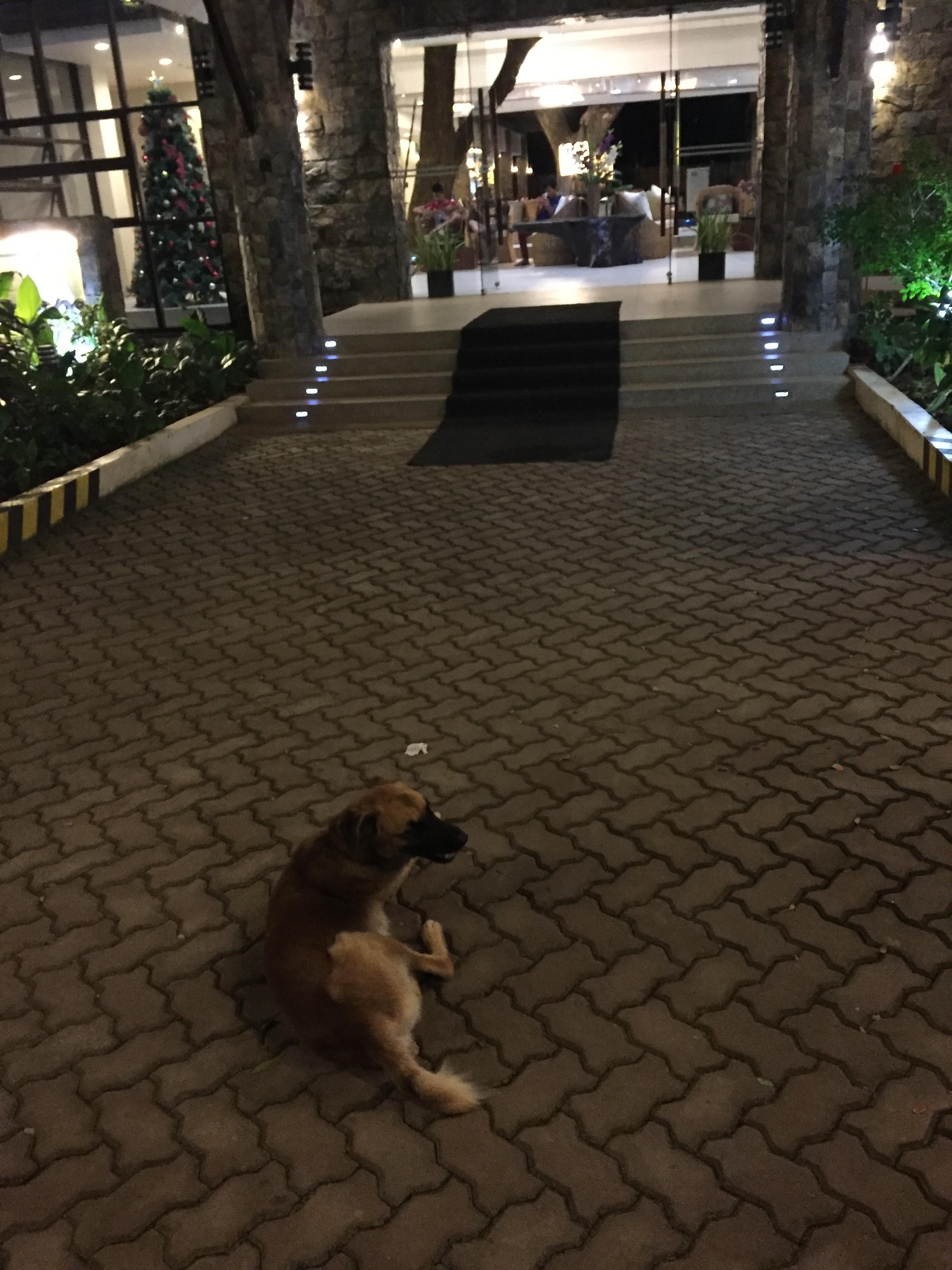 marianne-hotel