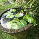 バリ島バティック布ショップの庭